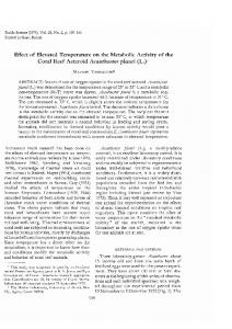 Effect of Elevated Temperature on the Metabolic Activity of the Coral ...