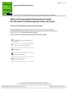Effect of Encapsulated Pseudomonas Putida Rs-198 ...
