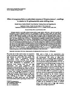 Effect of exogenous H2O2 on antioxidant enzymes ... - Semantic Scholar