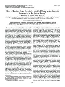 Effect of Feeding Cows Genetically Modified Maize on the Bacterial ...