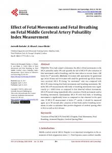 Effect of Fetal Movements and Fetal Breathing on Fetal Middle