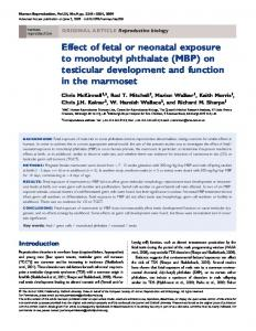 Effect of fetal or neonatal exposure to monobutyl ... - Semantic Scholar
