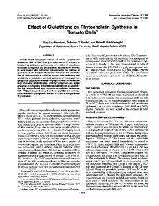 Effect of Glutathione on Phytochelatin Synthesis in - NCBI