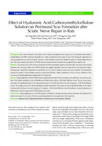 Effect of Hyaluronic Acid-Carboxymethylcellulose Solution on ...