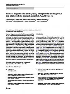Effect of magnetic iron oxide (Fe3O4) nanoparticles ...