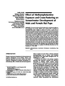 Effect of methamphetamine exposure and cross ... - Wiley Online Library