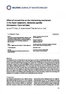Effect of microtrichia on the interlocking mechanism ... - Beilstein Journal