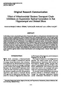 Effect of Mitochondrial Electron Transport Chain ...