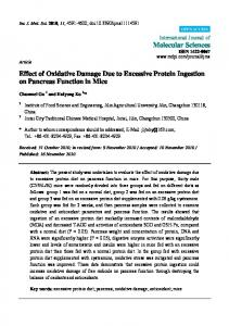 Effect of Oxidative Damage Due to Excessive