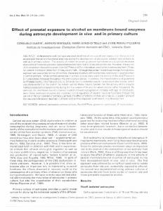 Effect of prenatal exposure to alcohol on membrane-bound enzymes ...