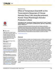 Effect of Temperature Downshift on the