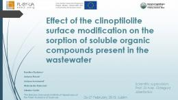 Effect of the clinoptilolite surface modification on the sorption of