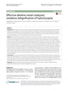 Effective alkaline metal-catalyzed oxidative
