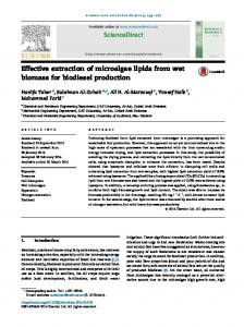 Effective extraction of microalgae lipids from wet