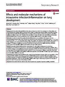 Effects and molecular mechanisms of intrauterine infection ...