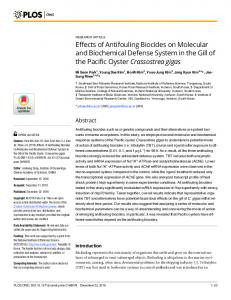 Effects of Antifouling Biocides on Molecular and