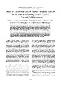 Effects of Epidermal Growth Factor, Fibroblast Growth Factor ... - IOVS
