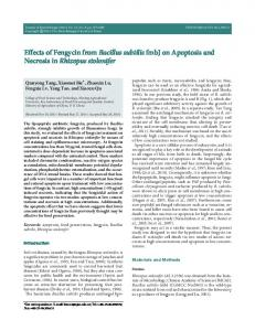 Effects of Fengycin from Bacillus subtilis fmbJ on ... - Springer Link