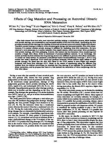 Effects of Gag Mutation and Processing on ... - Journal of Virology