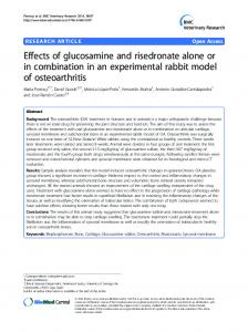 Effects of glucosamine and risedronate alone or in