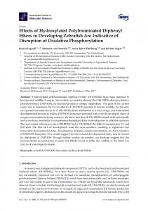 Effects of Hydroxylated Polybrominated Diphenyl