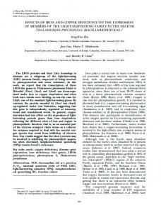 EFFECTS OF IRON AND COPPER DEFICIENCY ON THE ...