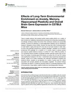 Effects of Long-Term Environmental Enrichment on ... - Semantic Scholar