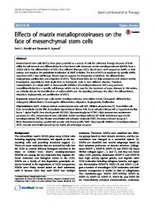 Effects of matrix metalloproteinases on the fate of mesenchymal ... - Core