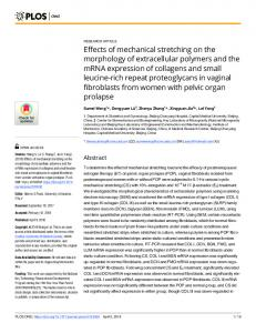 Effects of mechanical stretching on the morphology of ... - PLOS