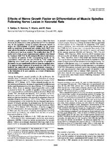 Effects of Nerve Growth Factor on Differentiation of Muscle Spindles ...