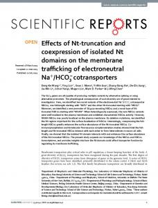 Effects of Nt-truncation and coexpression of