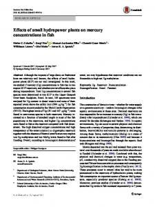 Effects of small hydropower plants on mercury