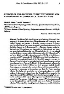 effects of soil drought on photosynthesis and chlorophyll ... - BAS