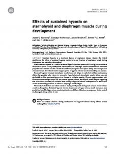 Effects of sustained hypoxia on sternohyoid and diaphragm muscle