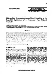 Effects of the Organophosphorous Methyl Parathion on the ... - SciELO