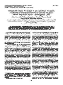 Efficient Bioethanol Production by a Recombinant Flocculent ...