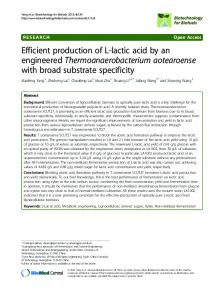 Efficient production of l-lactic acid by an