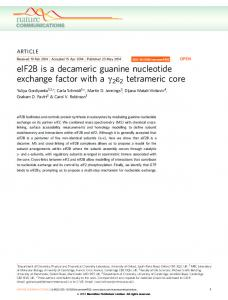 eIF2B is a decameric guanine nucleotide exchange factor ... - Nature