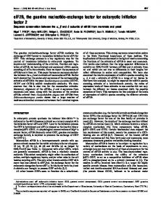 eIF2B, the guanine nucleotide-exchange factor for
