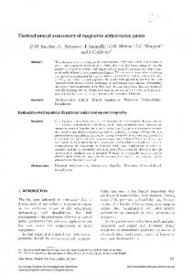 Electrochemical assessment of magnetite