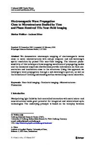 Electromagnetic Wave Propagation Close to ... - Markus Walther