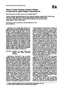 Electron Transfer Processes in SubunitI Mutants of Cytochrome bo ...