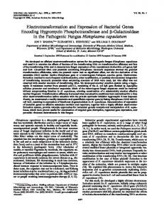Electrotransformation and Expression of Bacterial Genes Encoding ...
