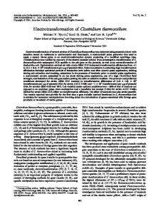 Electrotransformation of Clostridium thermocellum - Applied and ...