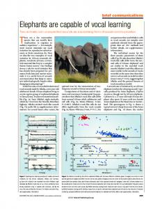 Elephants are capable of vocal learning