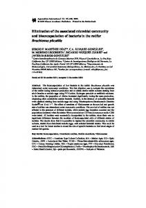 Elimination of the associated microbial community and