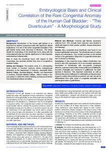 Embryological Basis and Clinical Correlation of the