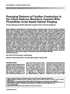 Emerging patterns of cardiac conduction in the ... - Wiley Online Library