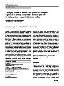 Emerging trends in research on spatial and temporal ... - Springer Link
