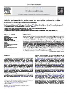 Endoglin is dispensable for angiogenesis, but required for endocardial ...